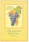 Click here to enlarge image and see more about item cs0346: The fruit of the Spirit is love Galations 5:22 Postcard