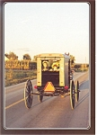 Amish Buggy Going Home Postcard