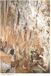Carlsbad Caverns, NM King's Highway Postcard