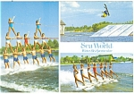 Click here to enlarge image and see more about item cs0580: Water Ski Spectacular Sea World  Postcard cs0580