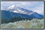 Click here to enlarge image and see more about item cs0684: Lone Mountain, Montana Postcard