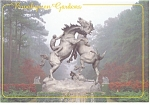 Click here to enlarge image and see more about item cs0769: Fighting Stallions Brookgreen Gardens SC Postcard cs0769
