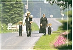 Amish Country, Pennsylvania Postcard