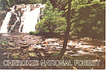 Click here to enlarge image and see more about item cs0831: Cherokee National Forest, Tennessee Postcard