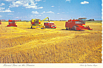 Click here to enlarge image and see more about item cs0837: Harvest Time in the Prairies Sasketchewan Canada Postcard cs0837