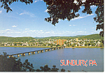 Sunbury PA Postcard cs0932