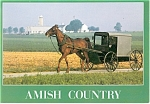 Amish Buggy, Farm in Background Postcard