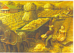 Amish Harvest Artwork Postcard cs1047