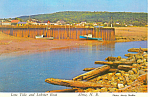 Click here to enlarge image and see more about item cs1055: Low Tide and Lobster Boat Alma, NB,Canada Postcard