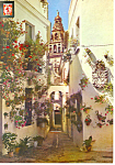Flowers Lane Cordoba Spain Postcard cs1187