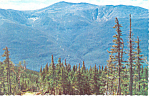 Tuckerman's Ravine, White Mts, NH Postcard  1982
