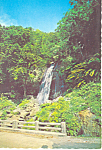 Click here to enlarge image and see more about item cs1257: Coca Falls, El Yunque Puerto Rico Postcard