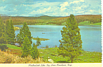 Click here to enlarge image and see more about item cs1271: Meadowlark Lake Big Horn Mountains WY  Postcard cs1271