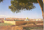 Jerusalem Israel Temple Area Postcard cs1382