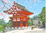 Click here to enlarge image and see more about item cs1396: Cherry Blossoms and Pagoda in Japan