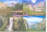 Yosemite National Park CA Postcard cs1401