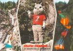 Click to view larger image of Colorado Springs CO Seven Falls Chester The Chipmunk Postcard CS14076 (Image1)