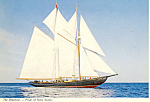 The Bluenose Pride of Nova Scotia Postcard cs1481