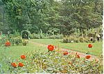 Garden at Hokkaido University Japan  Postcard cs1576