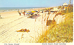Myrtle Beach, SC The Scenic Strand Postcard