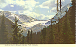 Click here to enlarge image and see more about item cs1701: Jackson Glacier,Glacier National Park, MT Postcard