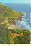 Click here to enlarge image and see more about item cs1703: Cape Perpetua on Oregon Coast Postcard