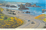 Click here to enlarge image and see more about item cs1705: Cape Sebastian on Oregon Coast Postcard