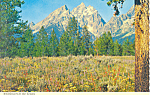 Grand Teton Peak Grand Teton National Park WY Postcard cs1714