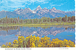 Click here to enlarge image and see more about item cs1718: Blacktail Ponds, WY Postcard 1972