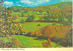 Autumn along Blue Ridge Parkway, Virginia  Postcard