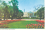 The White House, Washington DC Postcard