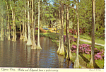 Greenfield Gardens Wilmington NC Postcard cs1765