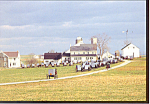 Amish Wedding Postcard