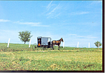 Amish Buggy on Country Road Postcard cs1803