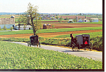 Amish Two Buggies  Postcard cs1811
