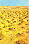 Ancient Tombs Arabian Desert Postcard
