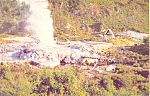 Click here to enlarge image and see more about item cs1900: Pohutu Geyser, Whakarewarewa, New Zealand Postcard