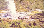 Click here to enlarge image and see more about item cs1900: Pohutu Geyser Whakarewarewa New Zealand Postcard cs1900