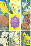 Click here to enlarge image and see more about item cs1968: New Zealand Native Flowers Postcard cs1968