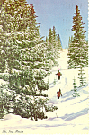 Ski, New Mexico Postcard 1978