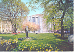 Coventry Cathedral West Side UK Postcard cs2105