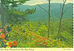 Click here to enlarge image and see more about item cs2033: Balsam Ridge Great Smoky Mountains NC Postcard cs2033