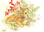 Christmas Card with Spotted Fawn Postcard 1983