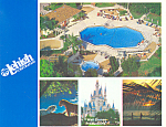 Leigh Corp Room Offer at Disney World  Postcard cs2050