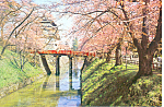 Click here to enlarge image and see more about item cs2127: Hirosaki Castle Hirosaki City Japan Postcard cs2127