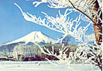 Mt Fuji from Oshino  Japan Postcard cs2132