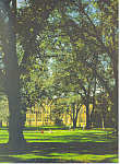 Hakkaido University, Sapporo Japan, Postcard