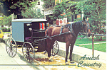 Amish Horse and Buggy Intercourse,PA, Postcard