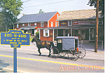 Amish Buggy, Bird-in-Hand, PA, Postcard