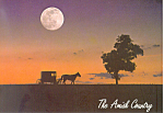 Amish Buggy, under Full Moon, PA, Postcard